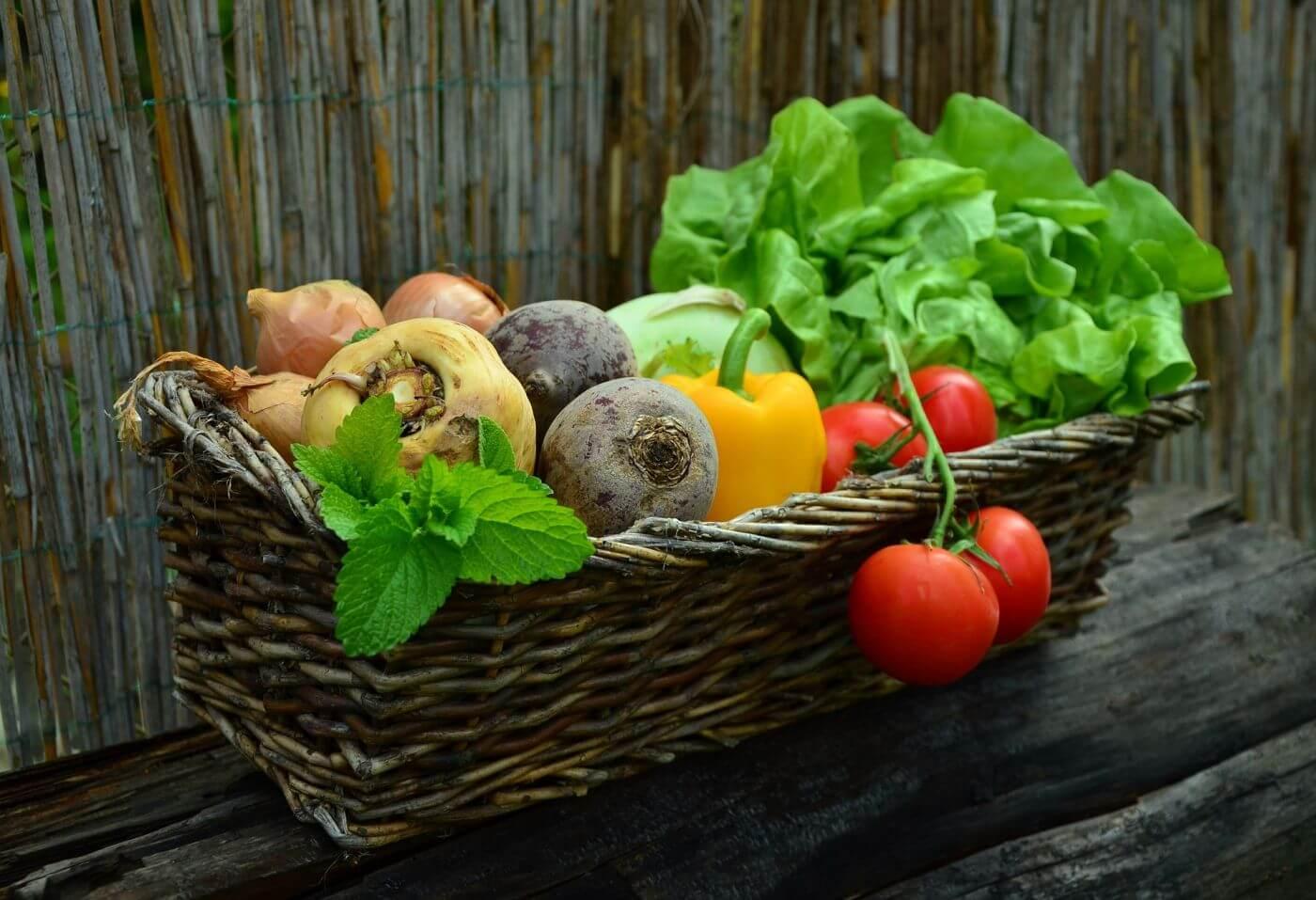 Geflochtener Weidekorb mit frisch gepflücktem Gemüse und Salat